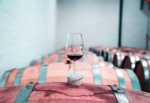 Treasury Wine Estates joins China's fine wine fad