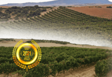 Viñalesa Wine Group, S.L. : Produces easy-to-drink, aromatic wines in the traditional Spanish manner at a great price!